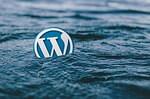 das WordPress Logo schwimmt im Wasser